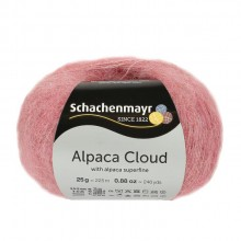 Alpaca Cloud